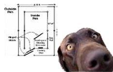 La cuccia del cane